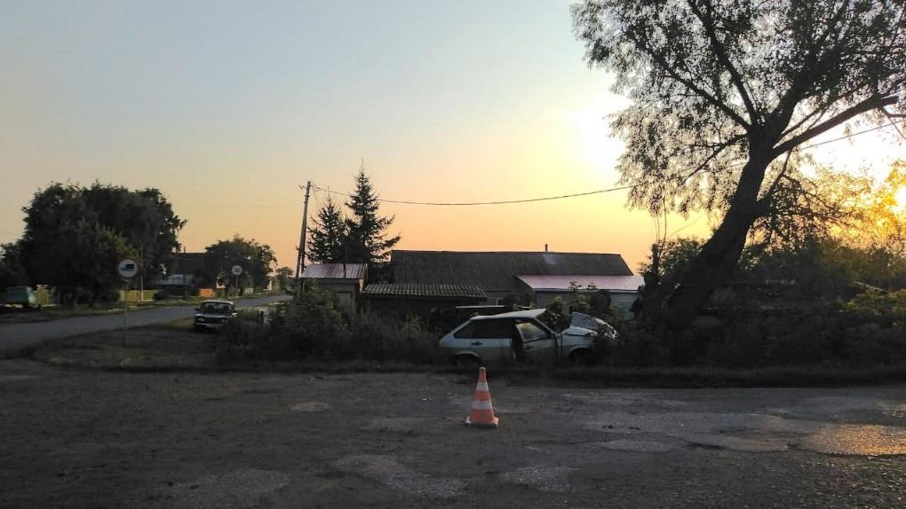 В Омской области пьяный водитель покалечил ребенка и двух мужчин