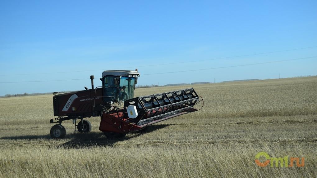 Омские аграрии получили льготные кредиты по ставкам до 5% от ВТБ