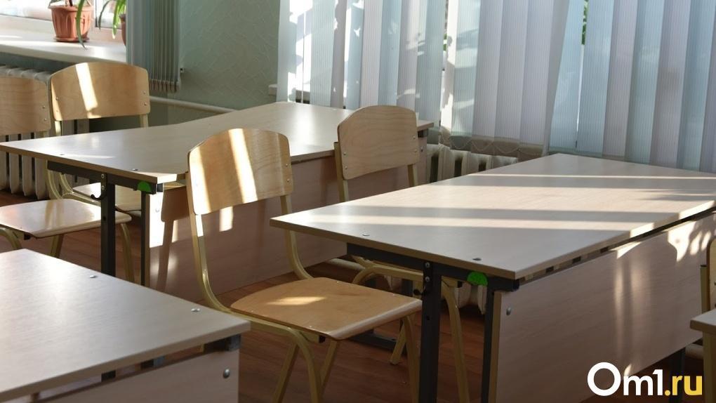 «Данный объект жизненно необходим»: в Омске появится новая школа на 1100 мест