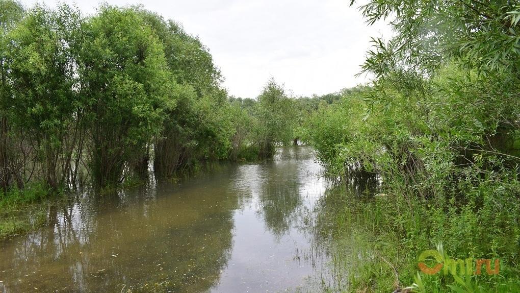 На реке в Омской области нашли тело пропавшего рыбака