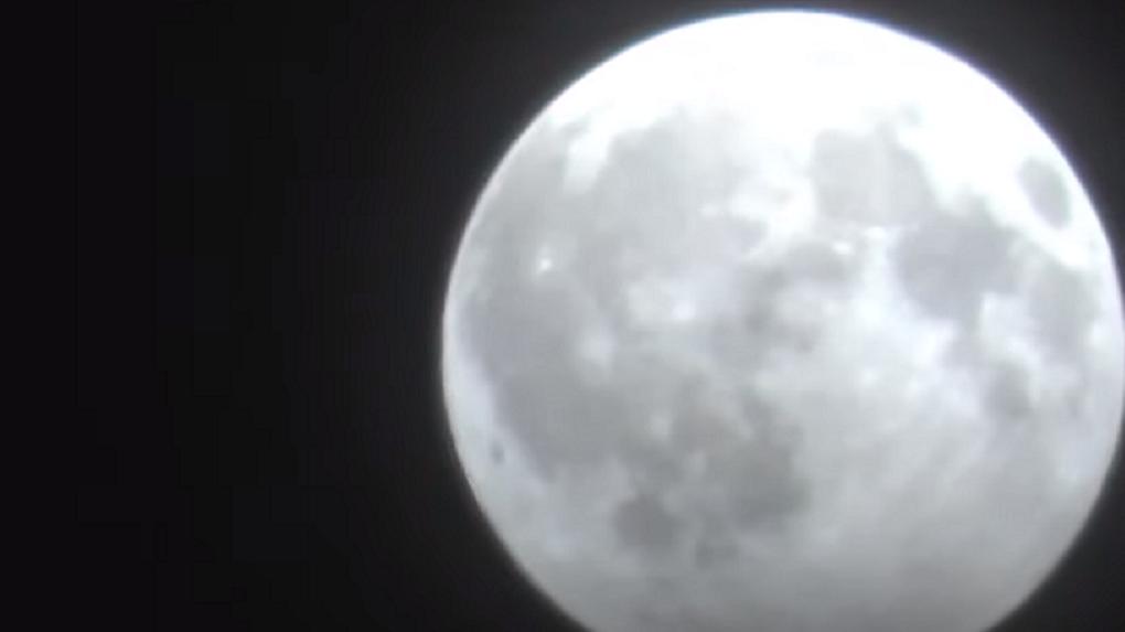 Новосибирец снял на видео Волчью Луну