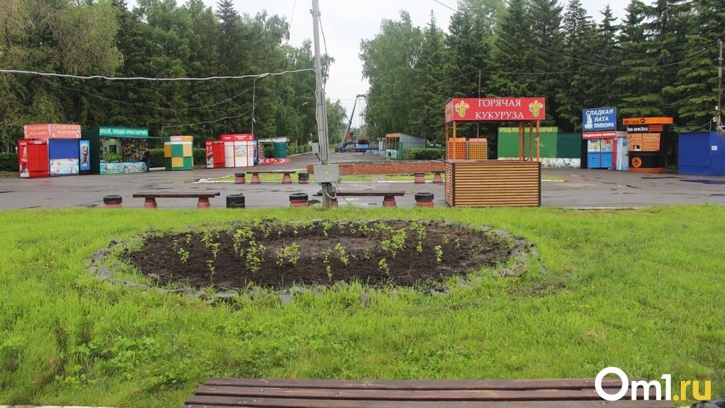 Пока омичи сидят дома, парки обрабатывают от клещей (фото)