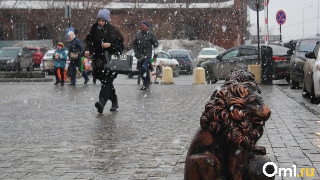 Штормовая погода в Омске продлится до конца недели