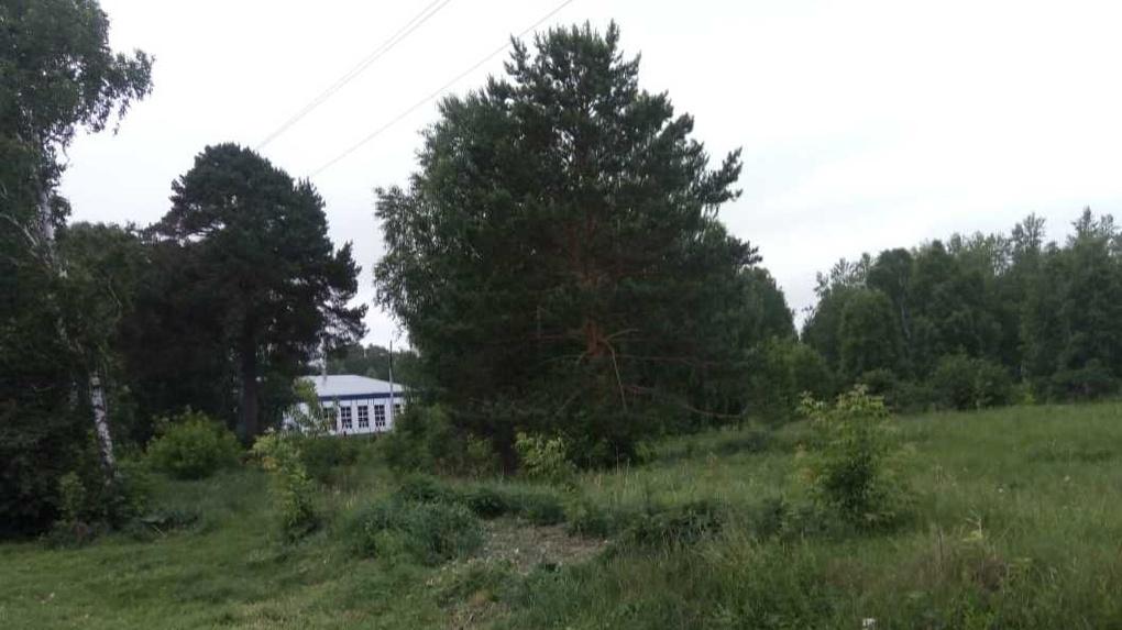 Пойдет по могилам: в Омской области хотят построить трассу для мотокросса на мусульманском кладбище