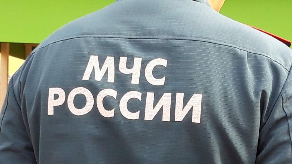 Самый богатый замглавы омского МЧС за год заработал 3,8 млн рублей