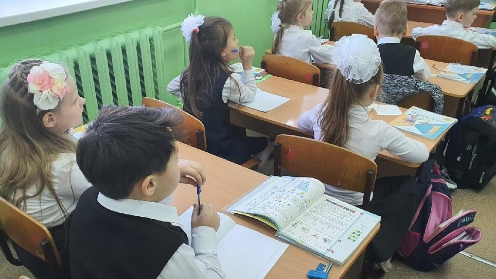 Число первоклассников увеличилось в Новосибирской области в 2021 году