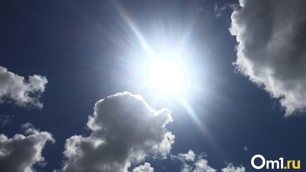 Жара, июль! Новосибирцев ждёт аномальная погода выше +30 градусов