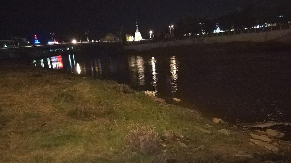 В Омске под Комсомольским мостом обосновались гуси-бродяги