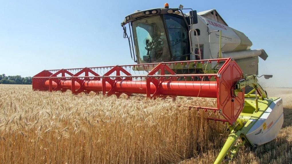 В Омской области намолотили 1 миллион тонн зерна
