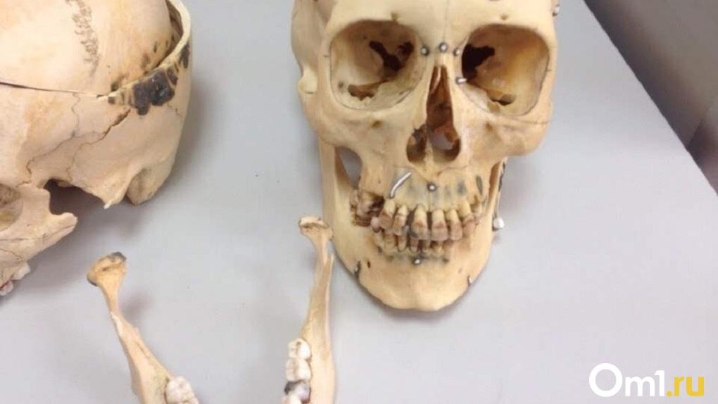 На омском предприятии нашли человеческие кости и череп