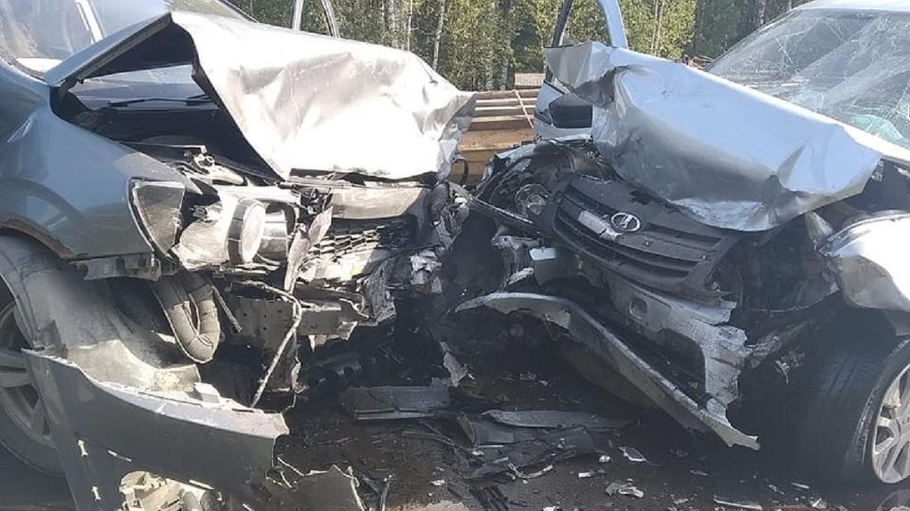 Двое детей, трое взрослых и собака пострадали в страшном ДТП в Новосибирске