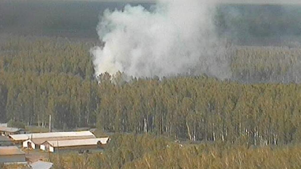 Видеокамеры на вышках сотовой связи предотвратили в Омской области 19 лесных пожаров