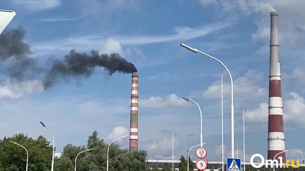 В Омске создают петиции за чистый воздух. Разбираемся, есть ли смысл и как на самом деле это работает