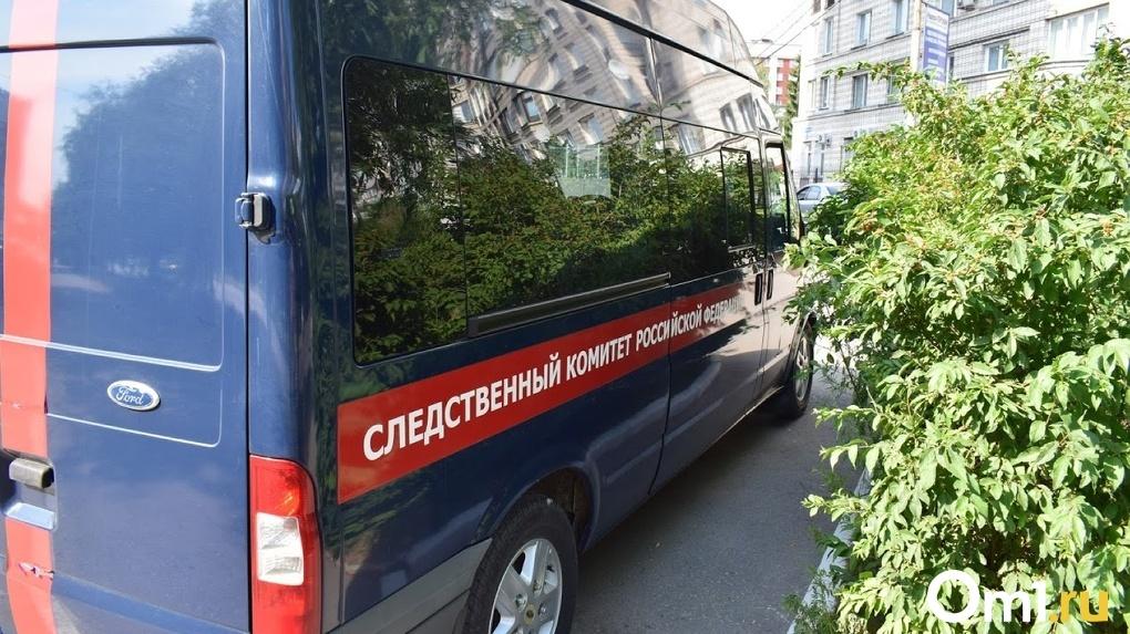 В Омской области возбуждено уголовное дело из-за утопления 7-летней девочки в Иртыше