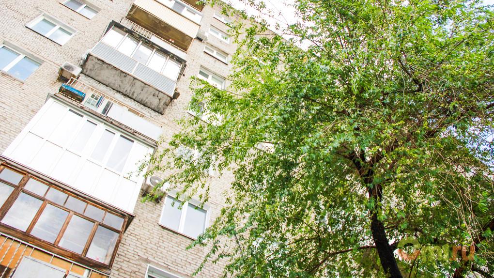 В Омске выделили 10 млн рублей на снос деревьев