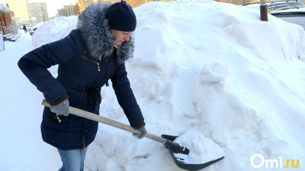 «Это несерьезно»: мэр Новосибирска раскритиковал активистов, попросивших Путина помочь с уборкой снега