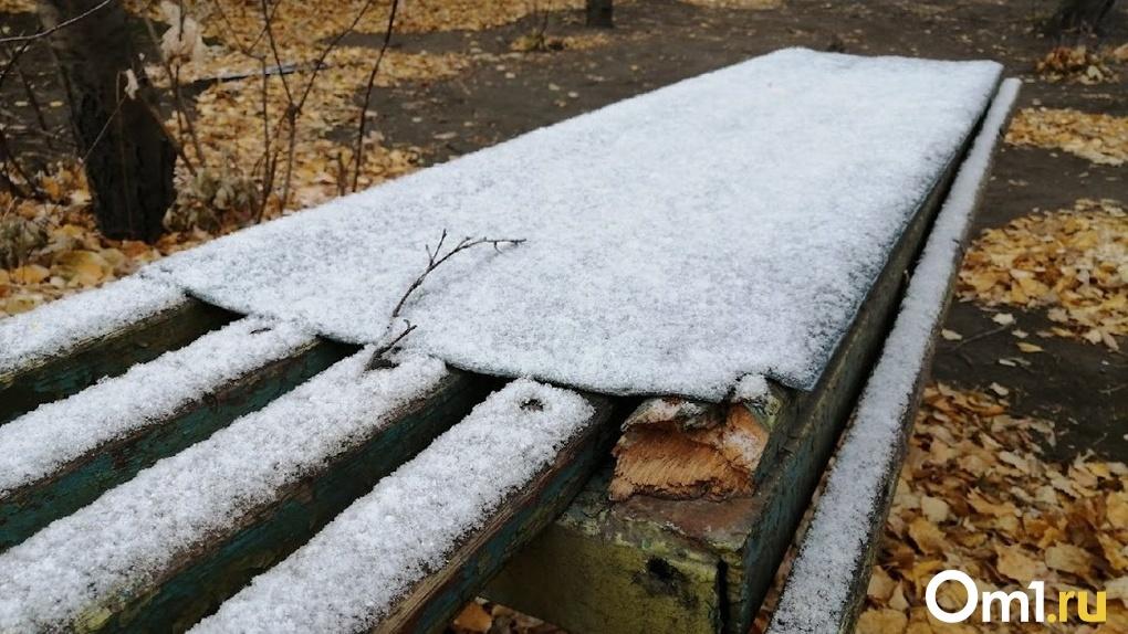 «Арктическое вторжение» несёт в Омск первый снег