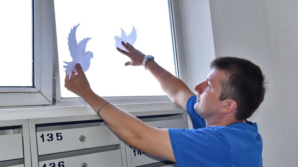Омичи приняли участие в акции «Окна России»