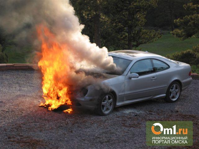 В Омске за ночь по неизвестным причинам обгорели два авто