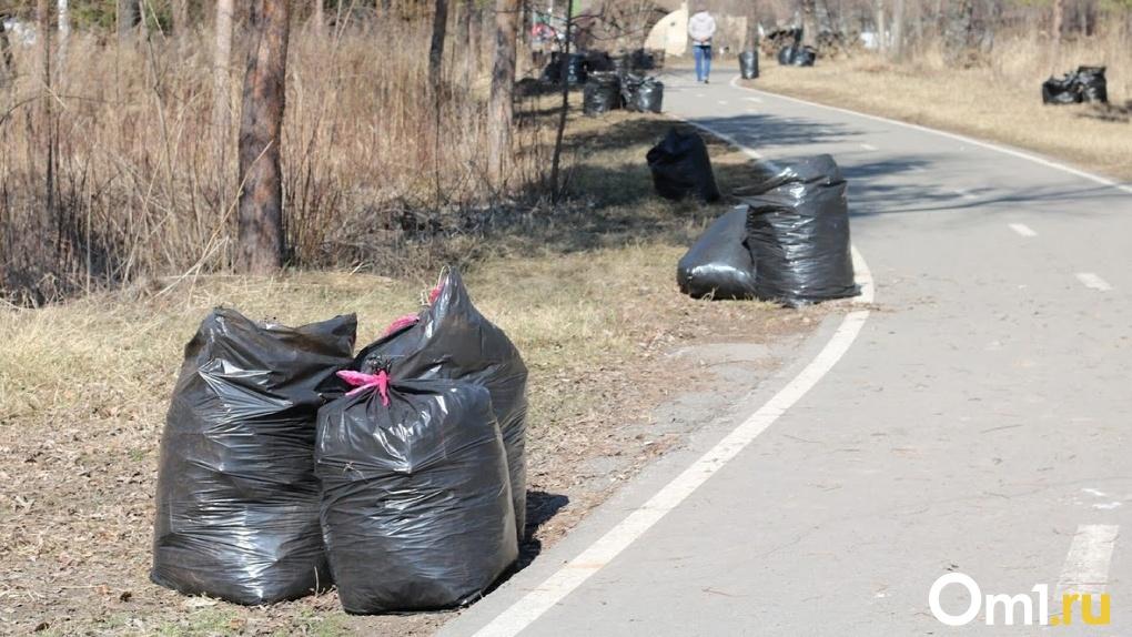 В Омской области к 2024 году должны ликвидировать больше тысячи несанкционированных свалок