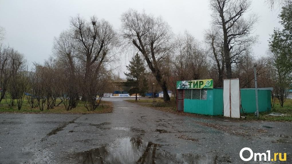 250 деревьев и 300 миллионов рублей. Какое благоустройство ждёт омский парк «Зелёный остров»?