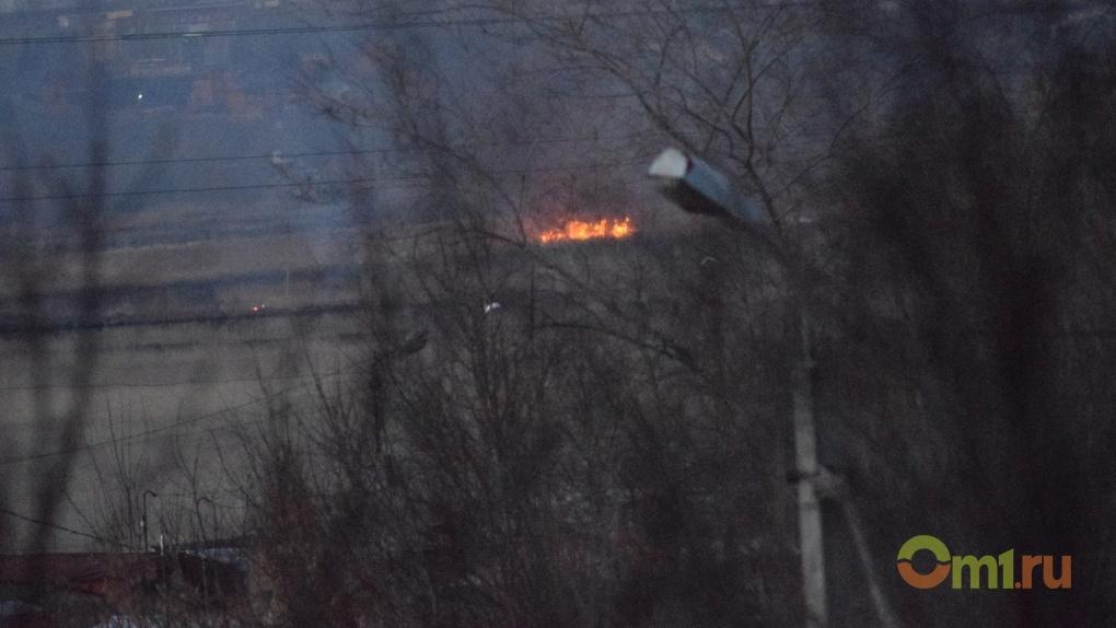 Омские леса уже начали гореть