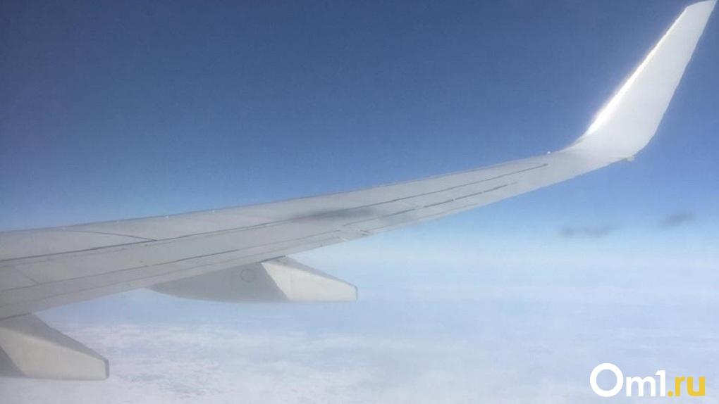 Минтранс заявил о запуске чартерного авиарейса для вывоза иностранцев из Новосибирска