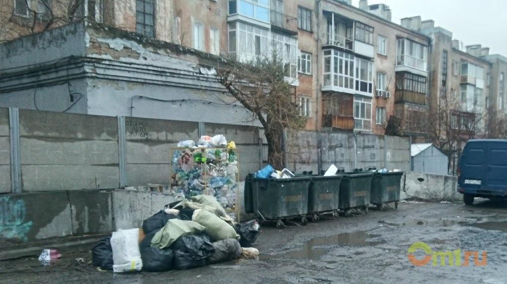 Известный омский эколог заявил, что мусорный тариф основан на «придуманных» расходах