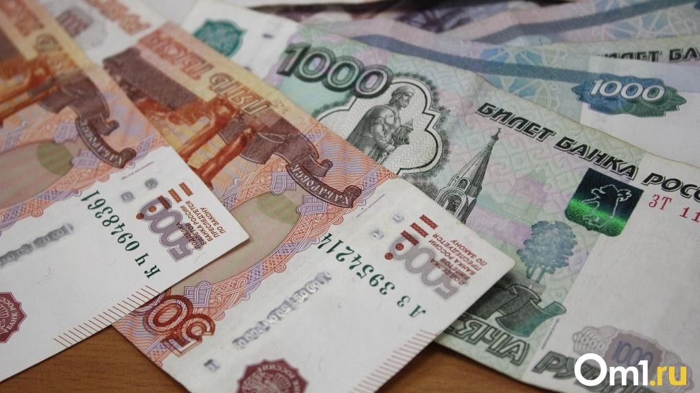 Омская область получит 20 «федеральных» миллионов. На что их потратят?