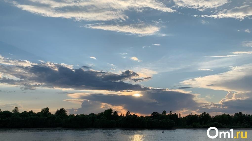 Омичи могут скачать бесплатный аудиогид для пеших прогулок по природному парку «Птичья гавань»