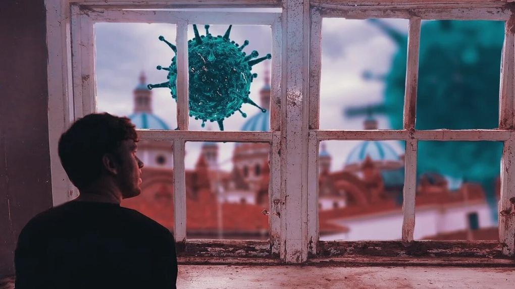 Минздрав рассказал, где зарегистрировали новые случаи коронавируса в Омской области