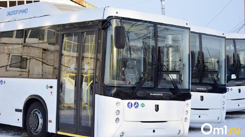 Горожане лишились 11 автобусов, связывающих Омск с сёлами области
