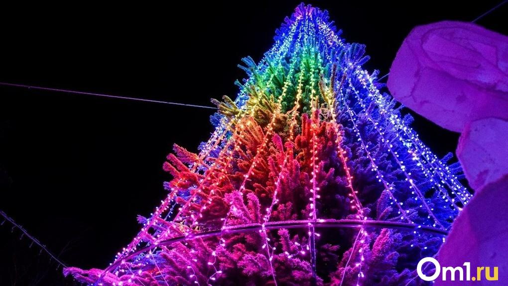 Новый год в Новосибирске пройдёт без массовых праздничных мероприятий