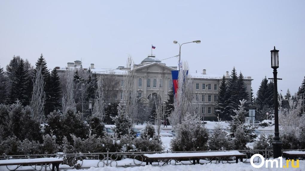 Техника для уборки в Омске вышла спустя час после начала снегопада