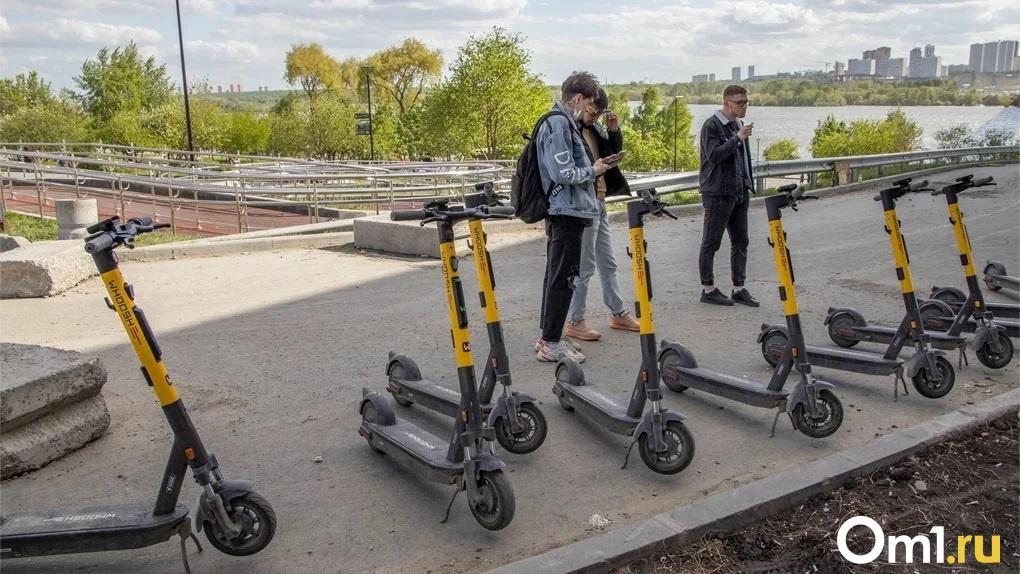 Сеть велодорожек обустроят в новосибирском Академгородке