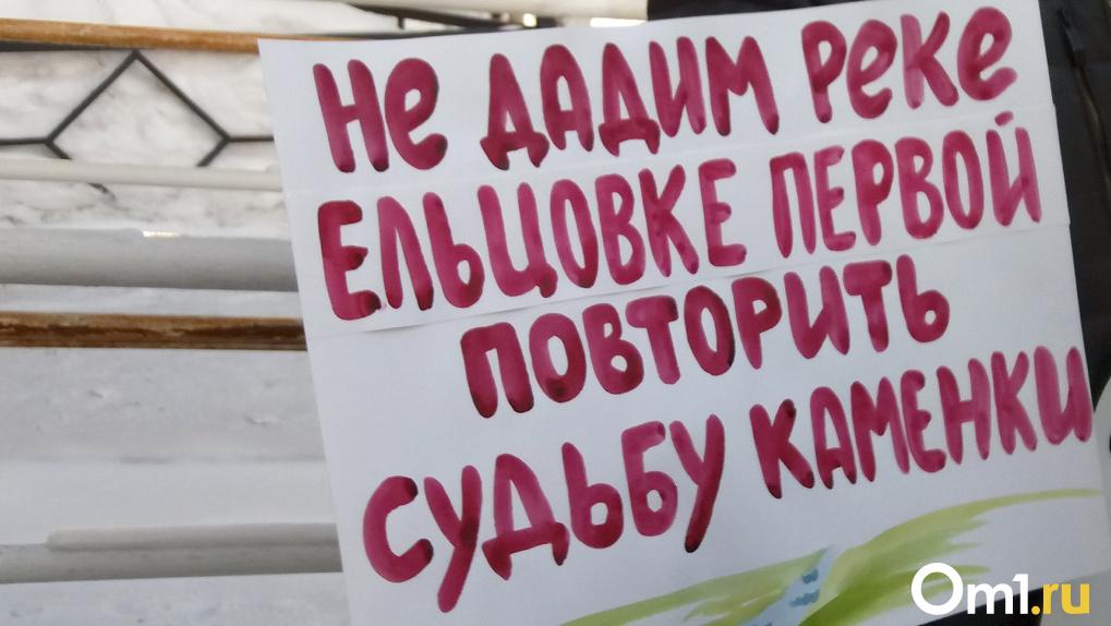 Свыше 6000 новосибирцев воюют против строительства дороги в пойме реки Ельцовка-1 (видео)