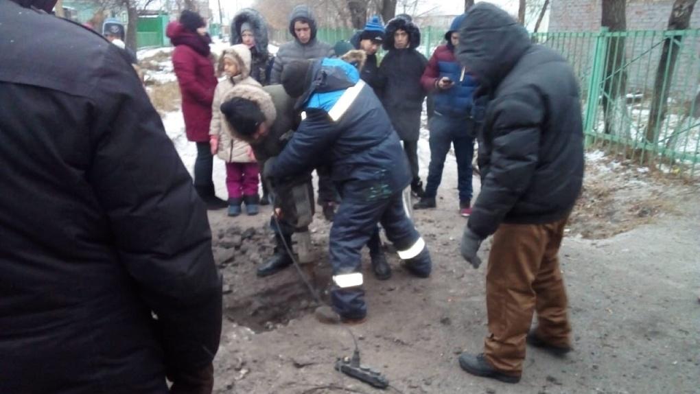 В Омске собаку, застрявшую в трубе, спасли волонтеры