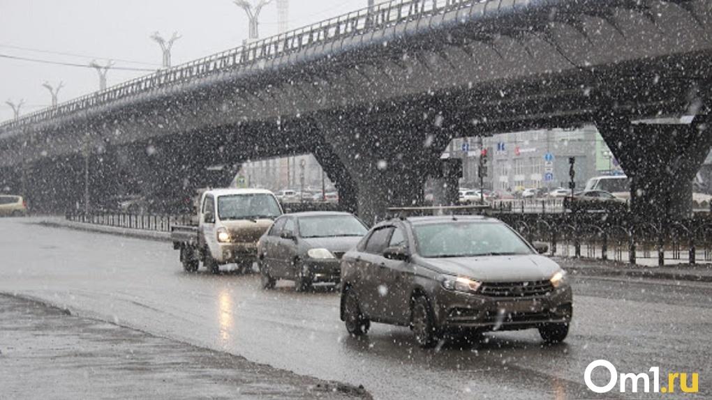 Тёплая погода в Омске сменится метелью и сильным ветром
