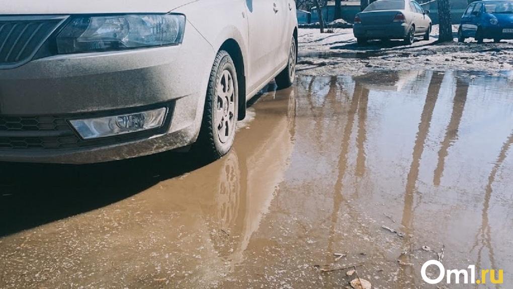 В Омской области из-за распутицы ограничили движение по грунтовым дорогам
