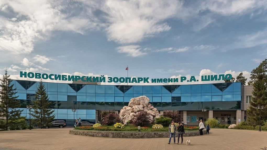 Новосибирцы смогут посещать зоопарк имени Шило в онлайн-режиме