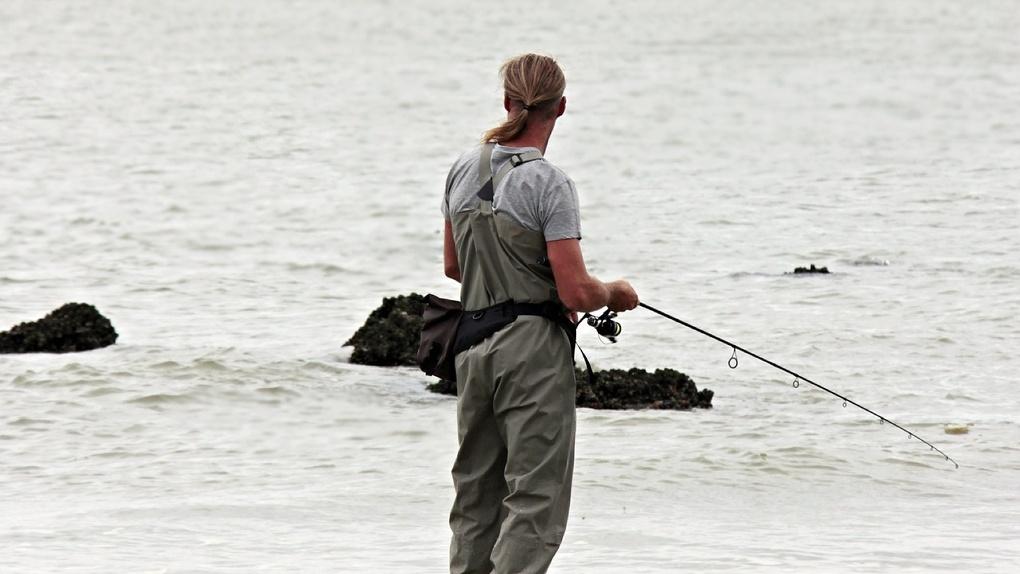 Власти Новосибирска объяснили причину гибели рыбы в реке Туле