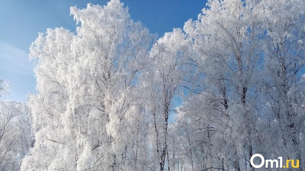 До -44 градусов. В Омске будет ещё холоднее, чем предполагали синоптики ранее