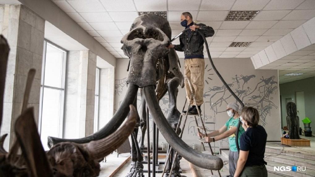 В Новосибирске мамонты стали частью субботника