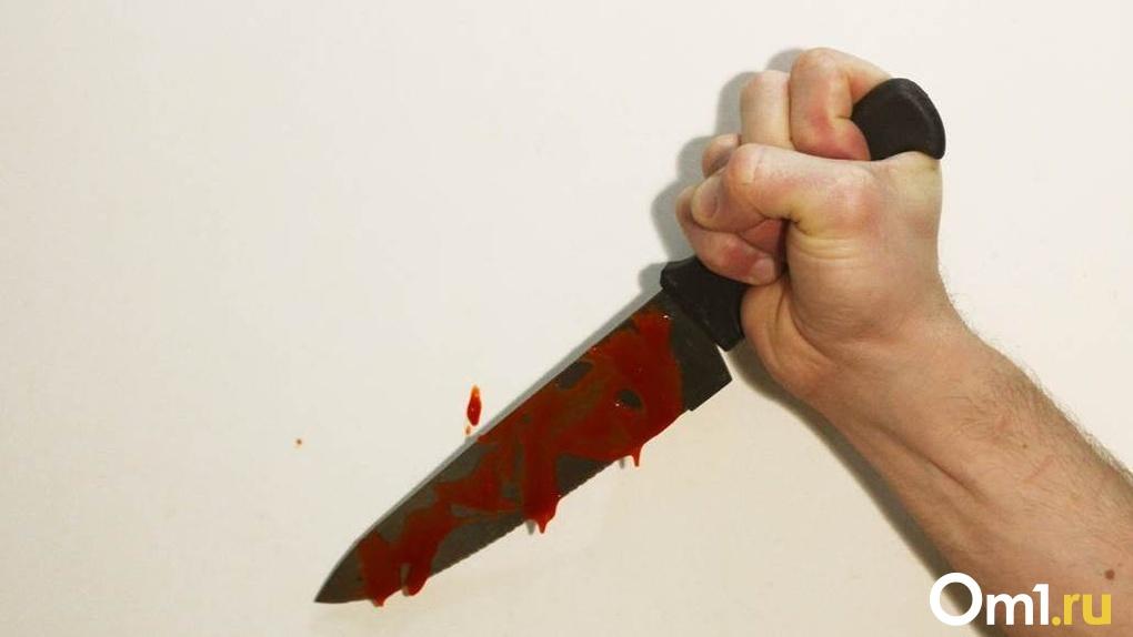 Пожизненный срок грозит новосибирцу за кровавую резню во дворе дома