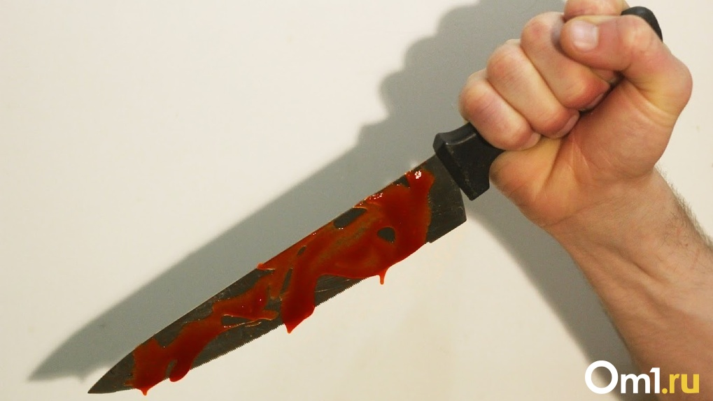 «Выслеживает в магазинах и нападает с ножом в подъезде»: в Омске ищут убийцу молодой девушки