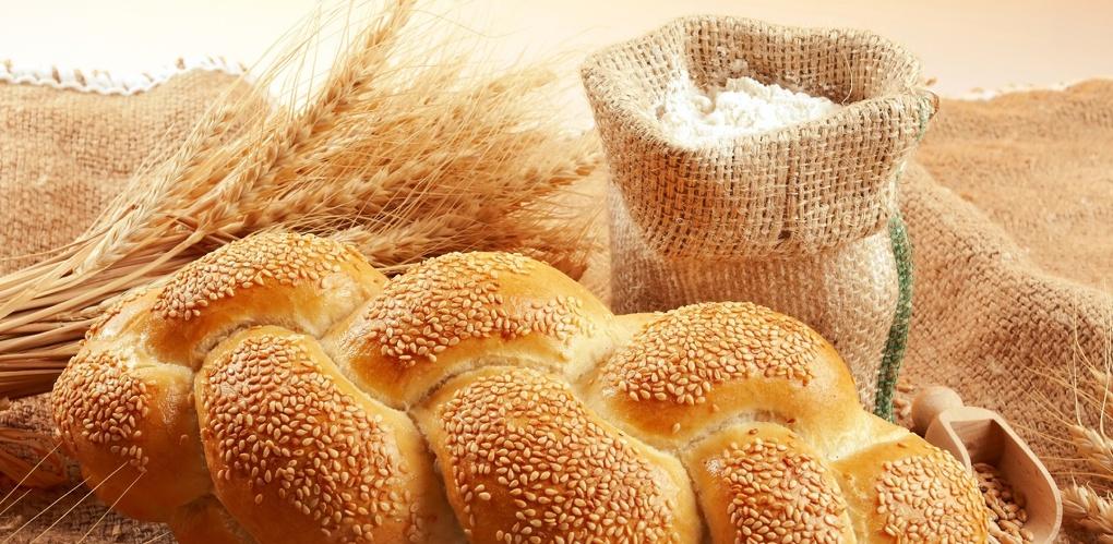 Зерно из Омской области признано одним из лучших в России