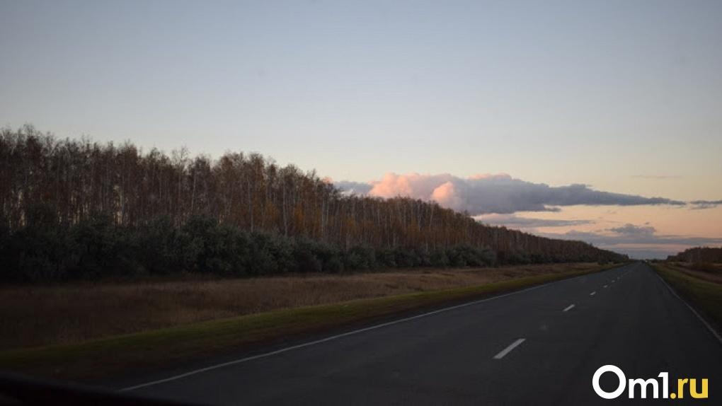 Стало известно, какие дороги в Омской области отремонтируют в 2021 году