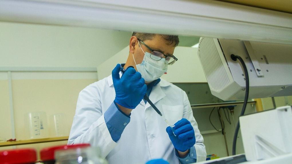 Платформу для оценки эффективности мер против коронавируса создадут новосибирские учёные