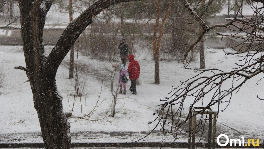 Жертва морозов. В Омске нашли очередной обледеневший труп