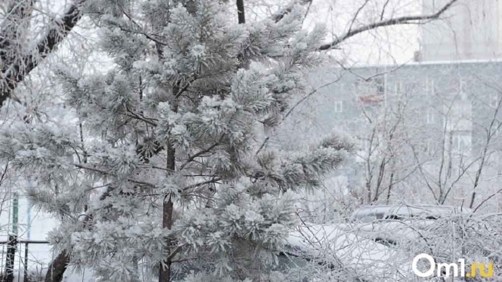 На Омск надвигаются снег, метель и крещенские морозы